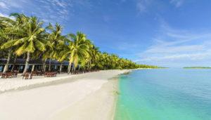 bahamas-t
